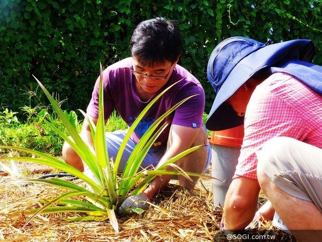 教育不一樣「2014 年神腦愛心小農場教師工作坊」培植希望