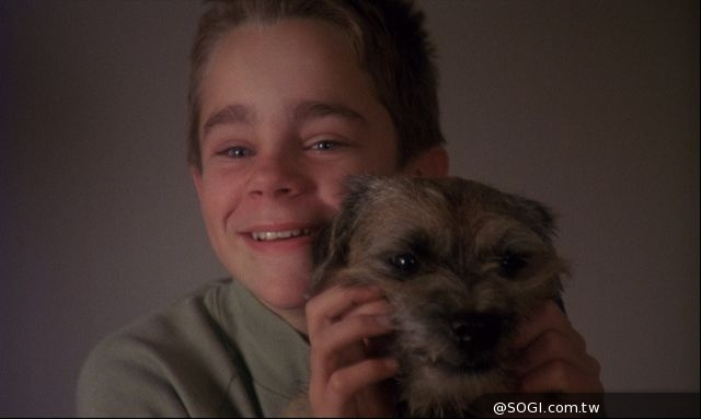 《狗臉的歲月》我願重溫無悔的童年 影史經典全新數位修復